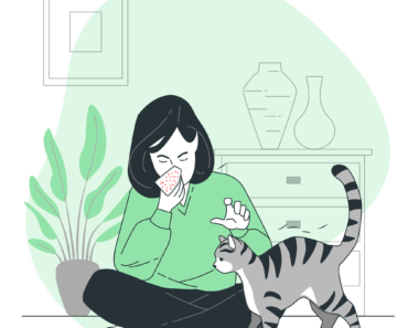 This is How You Can Deal with Allergies Household Pets In 7 Steps